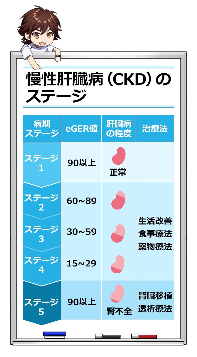 慢性肝臓病(CKD)のステージ