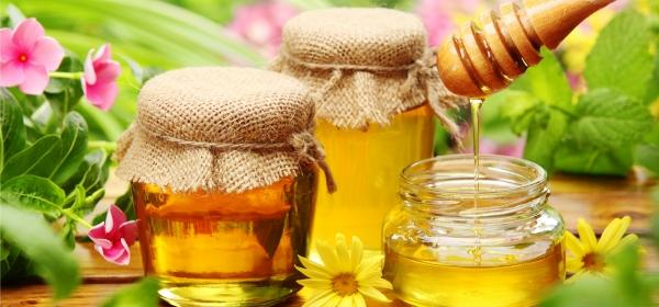 Effect of honey
